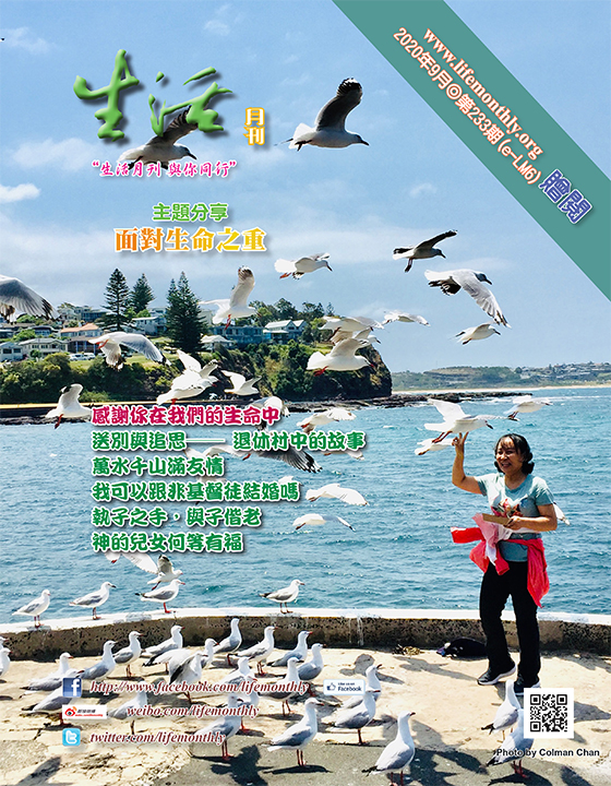 cover233