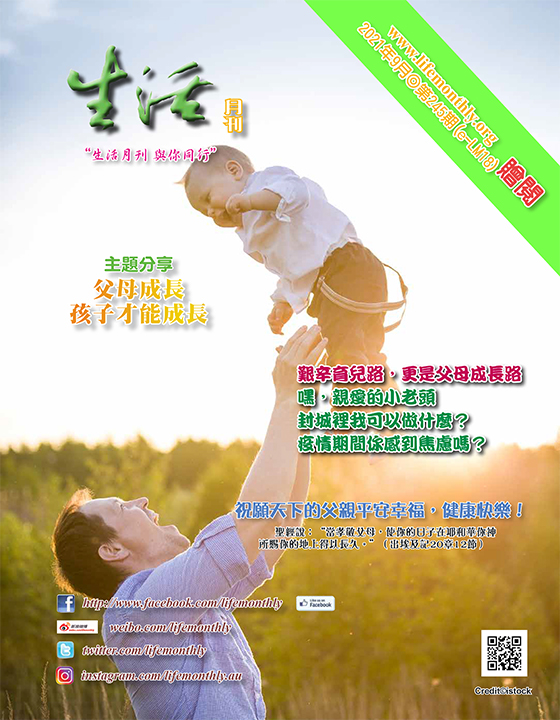 cover245